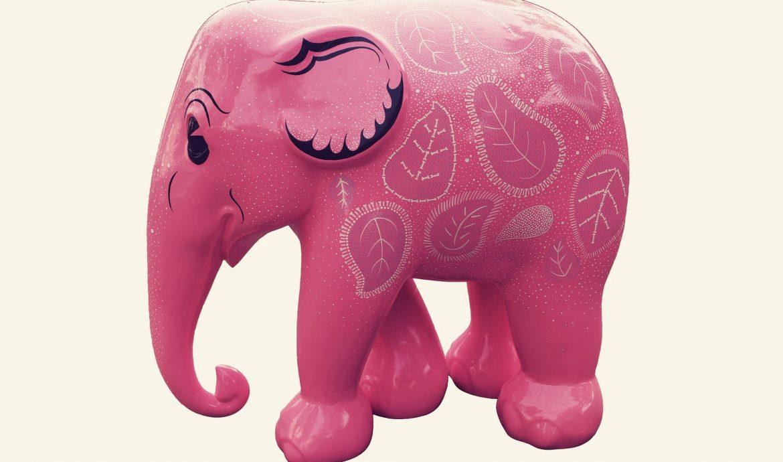 Max en de roze olifant; niet!